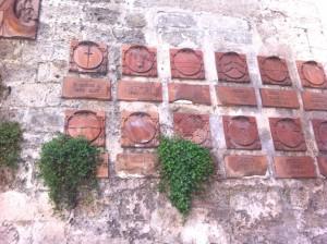 Porta San Giorgio Parietaria 1