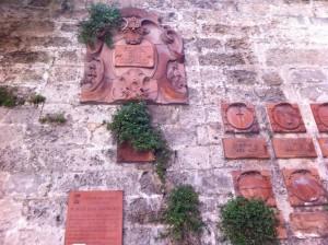 Porta San Giorgio Parietaria 2