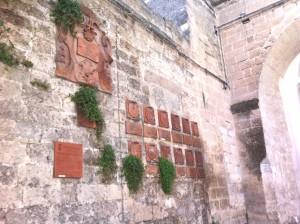Porta San Giorgio Parietaria 3
