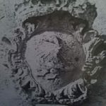 stemma cicinelli